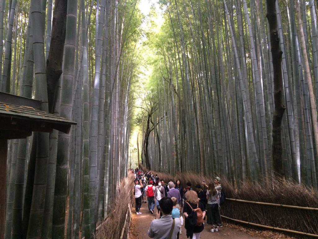 Japan travel Blog